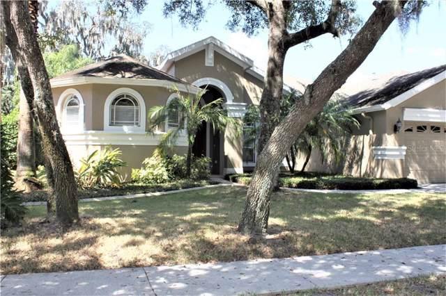 6107 Ibispark Drive, Lithia, FL 33547 (MLS #T3201478) :: Florida Real Estate Sellers at Keller Williams Realty