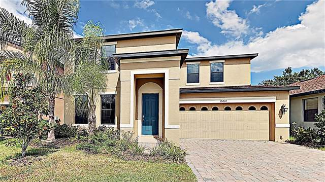 15234 Anguilla Isle Avenue, Tampa, FL 33647 (MLS #T3201779) :: Team Bohannon Keller Williams, Tampa Properties