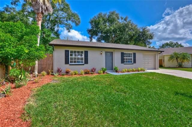 6503 Sugar Foot Court, Tampa, FL 33625 (MLS #T3201788) :: Team Bohannon Keller Williams, Tampa Properties