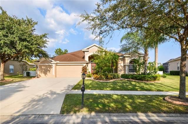 18109 Emerald Bay Street, Tampa, FL 33647 (MLS #T3201801) :: Bustamante Real Estate