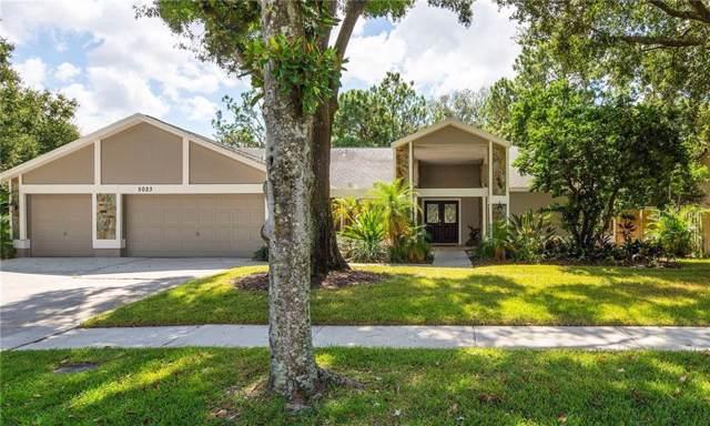 5023 Barrowe Drive, Tampa, FL 33624 (MLS #T3201809) :: Team Bohannon Keller Williams, Tampa Properties