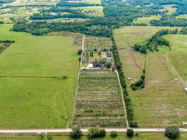 34006 Prospect Road, Dade City, FL 33525 (MLS #T3202179) :: The Duncan Duo Team