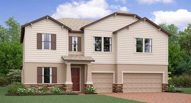 11518 Sunburst Marble Road, Riverview, FL 33579 (MLS #T3202186) :: NewHomePrograms.com LLC