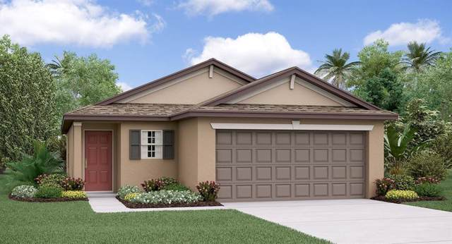 11414 Sage Canyon Drive, Riverview, FL 33578 (MLS #T3202261) :: Griffin Group