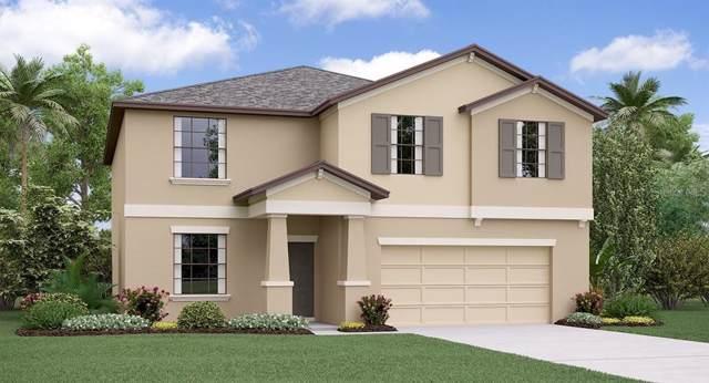 10224 Sage Canyon Drive, Riverview, FL 33578 (MLS #T3202283) :: Griffin Group