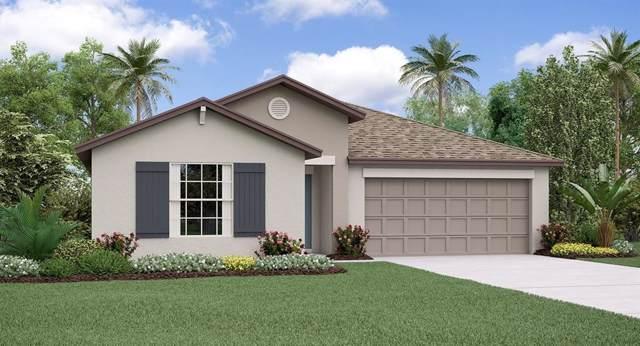 10103 Berryessa Avenue, Riverview, FL 33578 (MLS #T3202290) :: Griffin Group