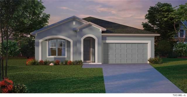 13316 Magnolia Valley Drive, Clermont, FL 34711 (MLS #T3202357) :: Team Bohannon Keller Williams, Tampa Properties