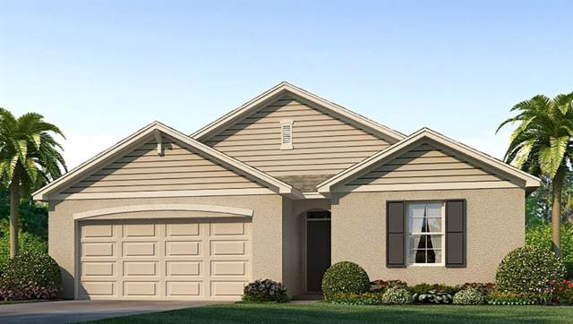 16620 Southern Oaks Trail, Parrish, FL 34219 (MLS #T3202399) :: The Brenda Wade Team