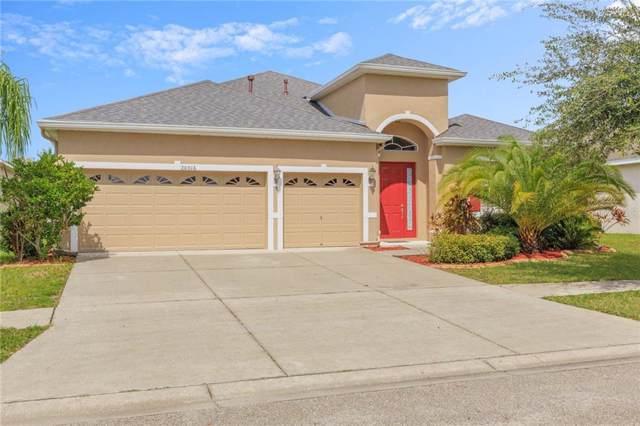 20016 Oakflower Avenue, Tampa, FL 33647 (MLS #T3202503) :: Team Bohannon Keller Williams, Tampa Properties