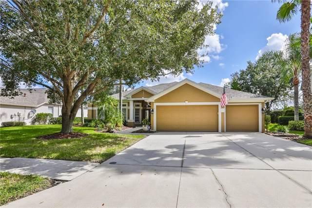 18109 Sugar Brooke Drive, Tampa, FL 33647 (MLS #T3202512) :: Team Bohannon Keller Williams, Tampa Properties