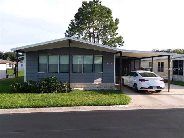 34034 Dovewood Drive, Wesley Chapel, FL 33543 (MLS #T3202558) :: The Brenda Wade Team