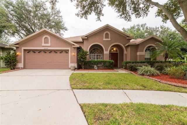 10228 Ashley Oaks Drive, Riverview, FL 33578 (MLS #T3202643) :: Griffin Group