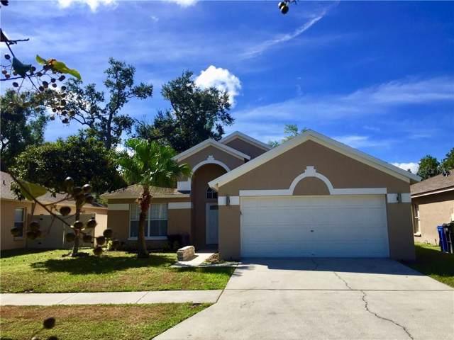 15138 Shaw Road, Tampa, FL 33625 (MLS #T3202656) :: Team Bohannon Keller Williams, Tampa Properties