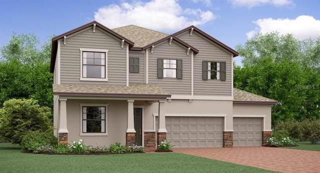 3123 Hilliard Drive, Wesley Chapel, FL 33543 (MLS #T3202730) :: NewHomePrograms.com LLC