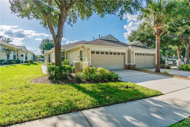 5913 Phoebenest Drive, Lithia, FL 33547 (MLS #T3203045) :: Dalton Wade Real Estate Group