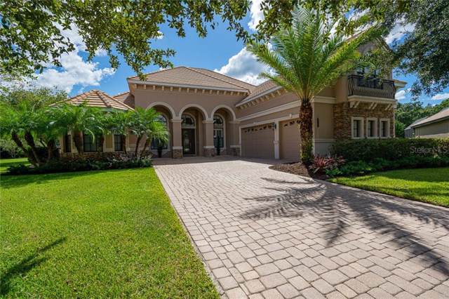 20101 Fair Hill Way, Tampa, FL 33647 (MLS #T3203081) :: Team Bohannon Keller Williams, Tampa Properties