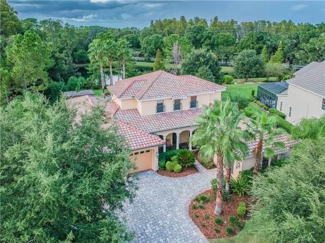 17512 Corsino Drive, Lutz, FL 33548 (MLS #T3203169) :: Andrew Cherry & Company