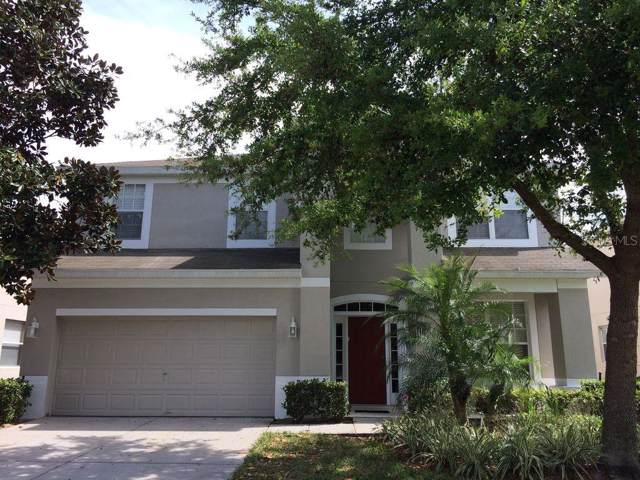 2613 Daulby Street, Kissimmee, FL 34747 (MLS #T3203218) :: The Light Team