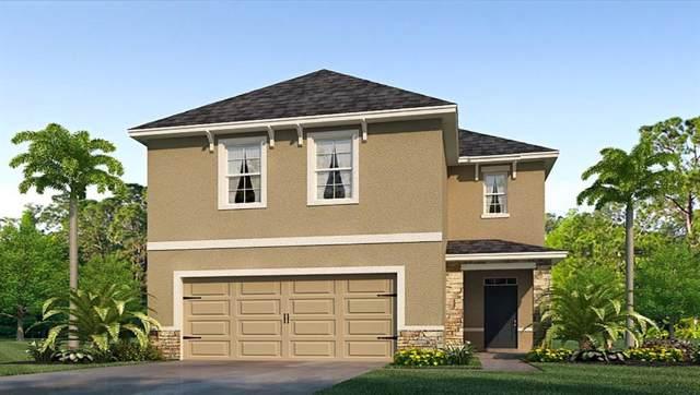 4820 Silver Topaz Street, Sarasota, FL 34233 (MLS #T3203231) :: Paolini Properties Group