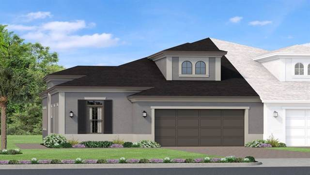4319 Barletta Court, Wesley Chapel, FL 33543 (MLS #T3203256) :: Team Bohannon Keller Williams, Tampa Properties