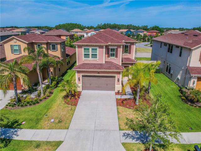 29259 Perilli Place, Wesley Chapel, FL 33543 (MLS #T3203280) :: Griffin Group