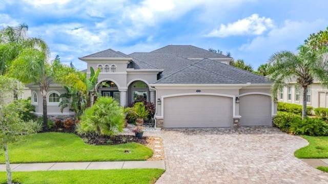 7413 Leaf Blade Lane, Wesley Chapel, FL 33545 (MLS #T3203288) :: Team Bohannon Keller Williams, Tampa Properties