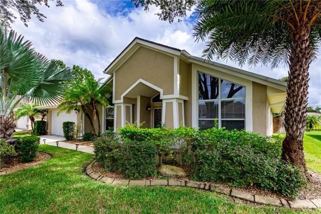 9242 Dayflower Drive, Tampa, FL 33647 (MLS #T3203289) :: 54 Realty