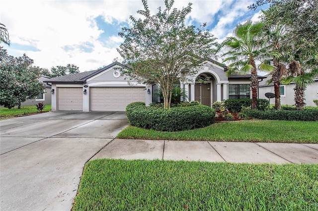 11813 Harpswell Drive, Riverview, FL 33579 (MLS #T3203305) :: 54 Realty