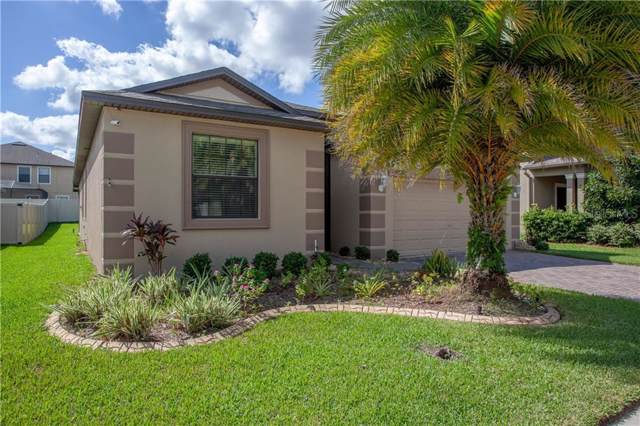 10222 Celtic Ash Drive, Ruskin, FL 33573 (MLS #T3203369) :: Dalton Wade Real Estate Group