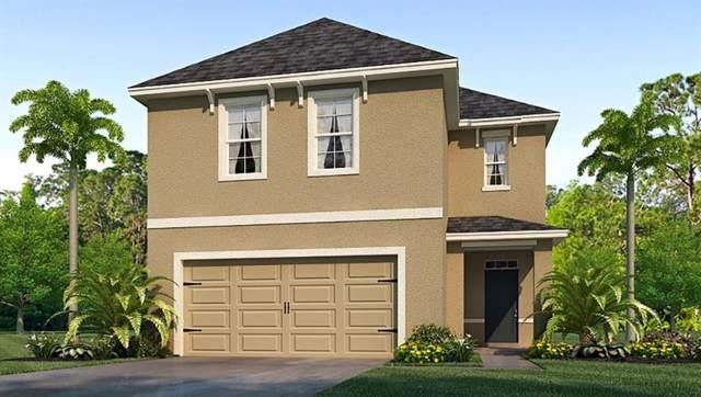 8148 Pelican Reed Circle, Wesley Chapel, FL 33545 (MLS #T3203390) :: The Brenda Wade Team