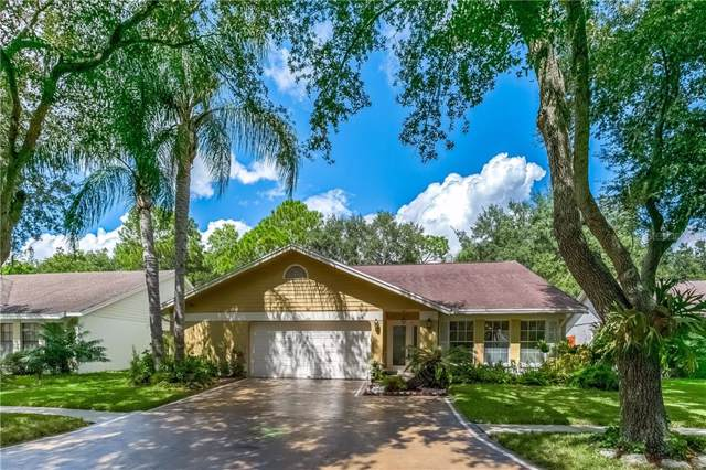 12115 Steppingstone Boulevard, Tampa, FL 33635 (MLS #T3203406) :: Griffin Group