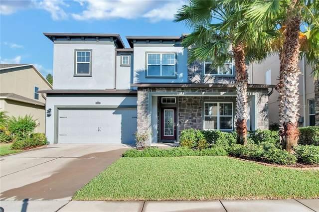 4347 Vermillion Sky Drive, Wesley Chapel, FL 33544 (MLS #T3203557) :: Team Bohannon Keller Williams, Tampa Properties