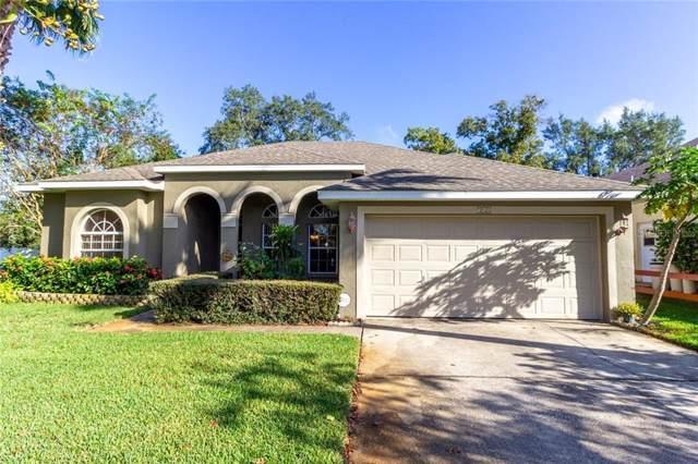 348 Wood Chuck Avenue, Tarpon Springs, FL 34689 (MLS #T3203570) :: Cartwright Realty