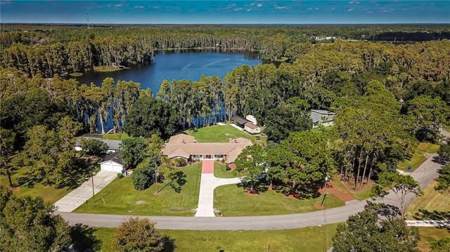 6245 Discovery Lane, Land O Lakes, FL 34638 (MLS #T3203615) :: Team Bohannon Keller Williams, Tampa Properties