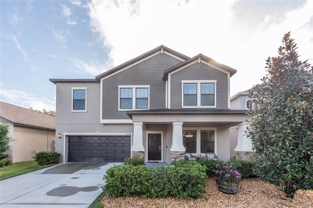 14248 Blue Dasher Drive, Riverview, FL 33569 (MLS #T3203696) :: 54 Realty