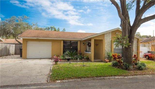 8003 Hearthstone Court, Tampa, FL 33615 (MLS #T3203706) :: Cartwright Realty