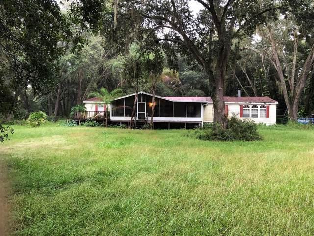 4233 Brackwood Road, Seffner, FL 33584 (MLS #T3203717) :: Team Pepka