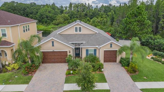 32331 Firemoss Lane, Wesley Chapel, FL 33543 (MLS #T3203726) :: Team TLC | Mihara & Associates