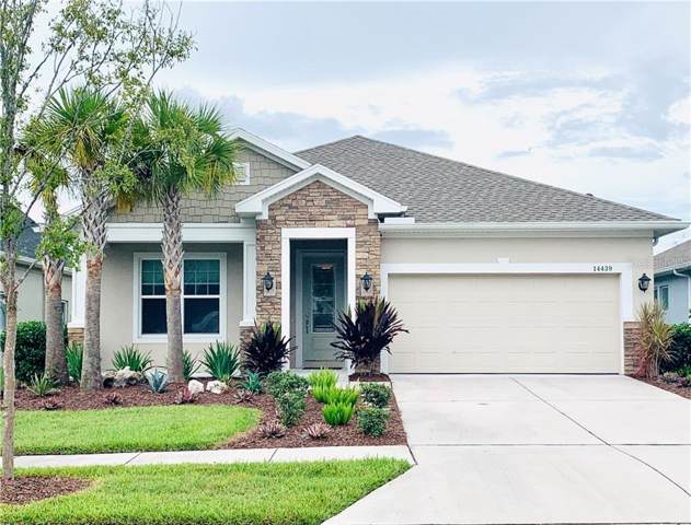 14439 Trails Edge Boulevard, Odessa, FL 33556 (MLS #T3203739) :: Your Florida House Team