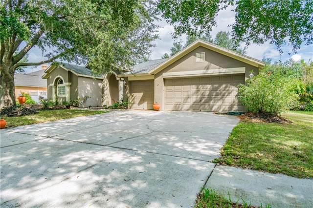 3808 Triple Jump Street, Valrico, FL 33596 (MLS #T3203822) :: Team Bohannon Keller Williams, Tampa Properties