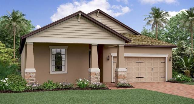 16302 Hyde Manor Drive, Tampa, FL 33647 (MLS #T3203894) :: Andrew Cherry & Company