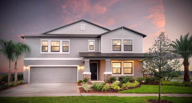6220 Windship Court, Tampa, FL 33647 (MLS #T3203913) :: Andrew Cherry & Company