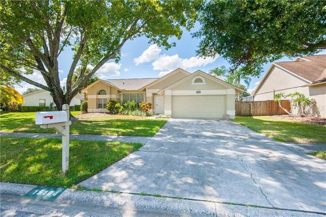 15104 Redvale Drive, Tampa, FL 33625 (MLS #T3203917) :: Cartwright Realty