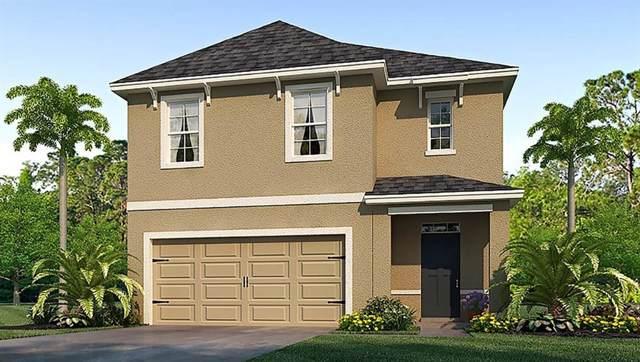 8179 Pelican Reed Circle, Wesley Chapel, FL 33545 (MLS #T3204058) :: The Brenda Wade Team