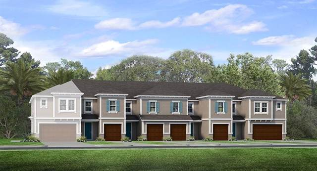 6821 Citrus Creek Lane, Tampa, FL 33625 (MLS #T3204125) :: GO Realty