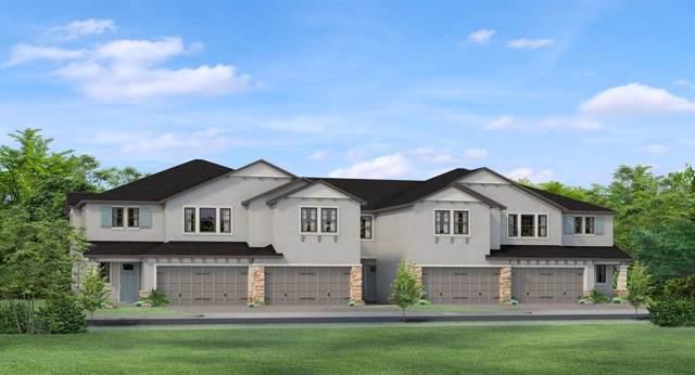 4884 San Martino Drive, Wesley Chapel, FL 33543 (MLS #T3204144) :: Team Bohannon Keller Williams, Tampa Properties