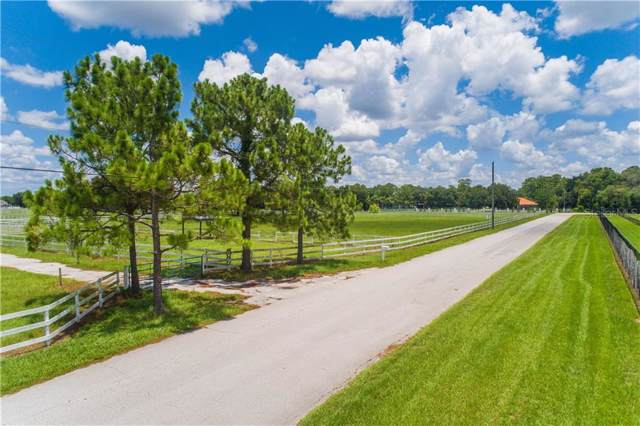 18751 Crescent Road, Odessa, FL 33556 (MLS #T3204186) :: Cartwright Realty