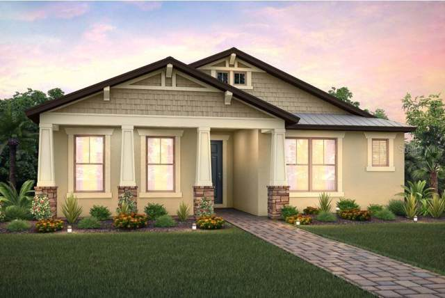 2851 Murray Pass, Odessa, FL 33556 (MLS #T3204190) :: Bustamante Real Estate