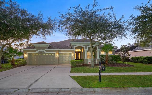 6615 Thornton Palms Drive, Tampa, FL 33647 (MLS #T3204196) :: Andrew Cherry & Company