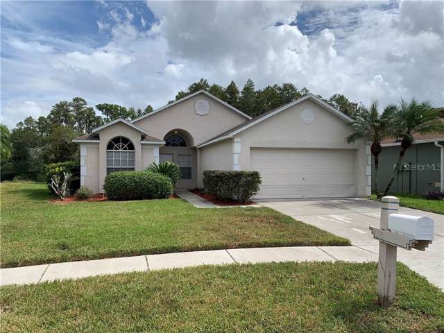 1930 Grenville Court, Wesley Chapel, FL 33543 (MLS #T3204274) :: Team Bohannon Keller Williams, Tampa Properties